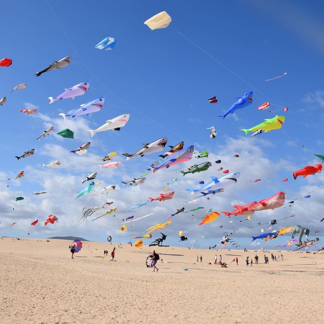 kites at kite carnival on beach