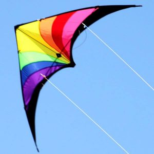 Dual control Prism stunt kite for teenagers