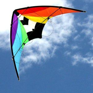 Stuntmaster Dual Control Kite
