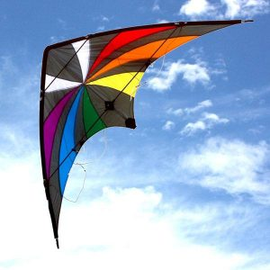 Backdraft dual control stunt kite