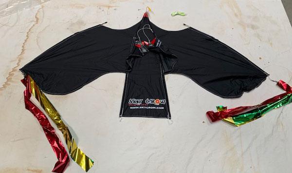 Front view of sky crom bird scarer kite