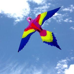 Single string Bird kite for children flying in the distance