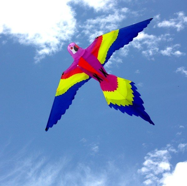 Single string Bird kite for children flying in the distance