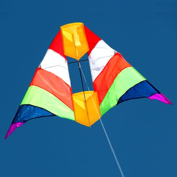 Rainbow Cell delta kite with Box kite in the middle
