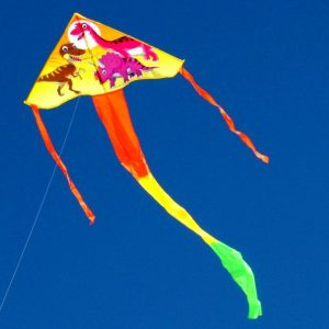 dinosaur printed single line delta kite flying in the distance