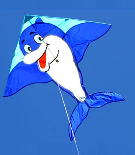 beautiful dolphin single string kite