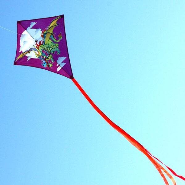 long distance shot of dragon diamond kids kite showing long tails
