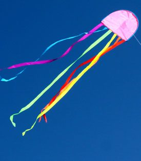 jellyfish australian made childrens kite