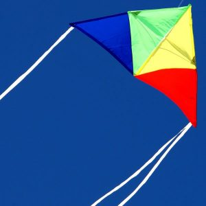 Junior Delta light wind kite for kids in the sky