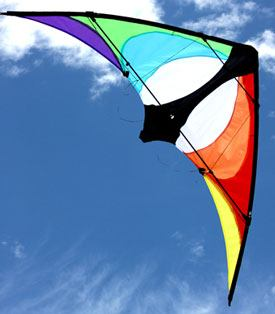 Maddog small size stunt kite for teenagers