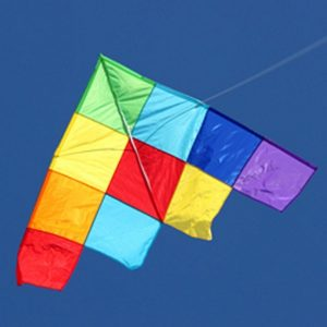 Large patchwork delta single line kite in the sky