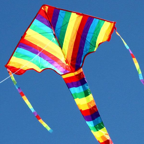 Rainbow delta long tailed kite for kids in flight