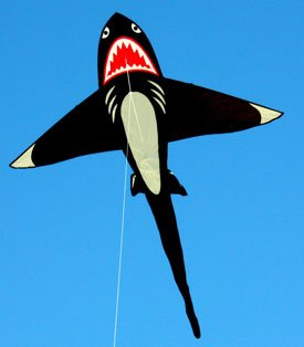 Large shark kite for children