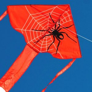 Spider single string kite for kids