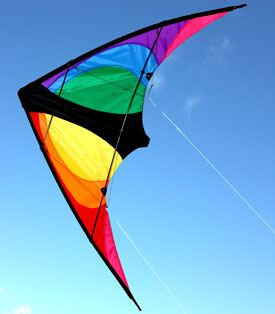 Stinger small dul control kite for teenagers