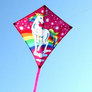 Beautiful Unicorn single string kite for kids