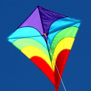 Waves diamond single string childrens kite