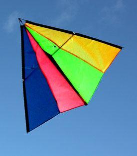 Wind Wizard Australian made stunt kite