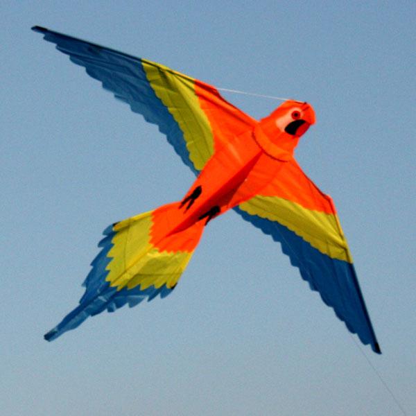 Orange Lorikeet kite from Leading Edge Kites