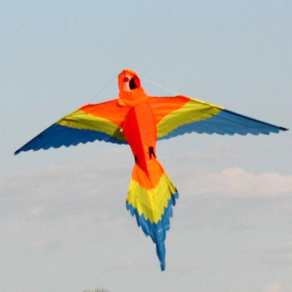 Orange Lorikeet kite in sky