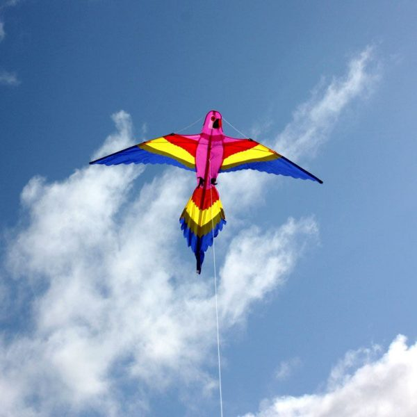 Bird shaped kite for kids in flight
