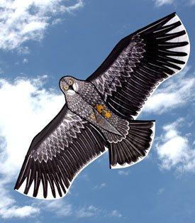 Eagle single line kite for kids