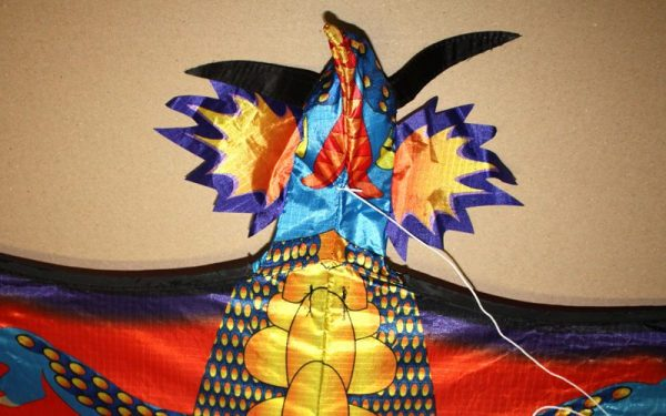 Detail of 3 dimensional Head of Fire Dragon single string kids kite