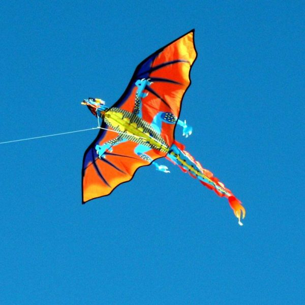 Fire Dragon Single line kite for kids in flight