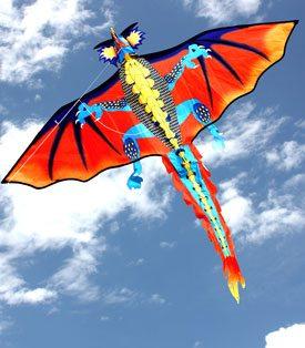 dragon single string kids kite