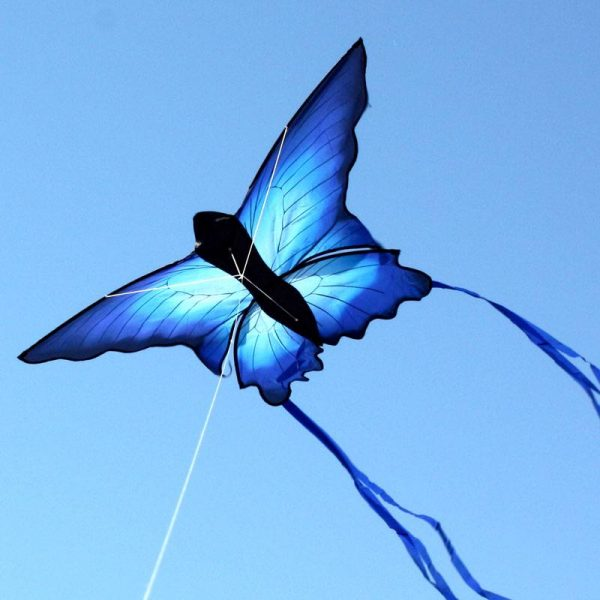 Beautiful blue butterfly kids kite for sale in Australia