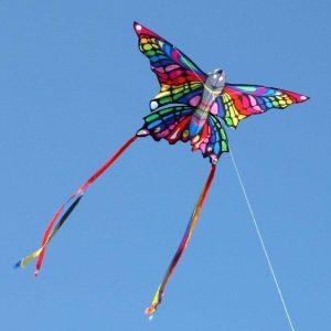 Rainbow Butterfly kite