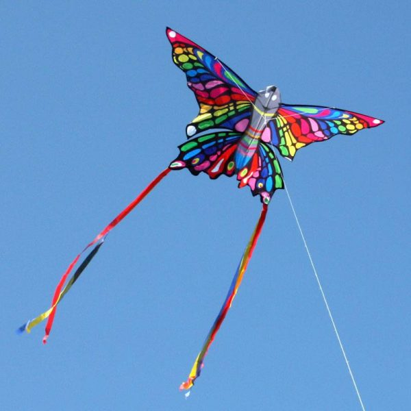 beautiful rainbow coloured butterfly single string kite