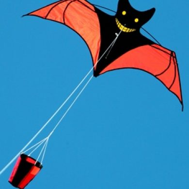 smily bat kite with drogue stabliser tail