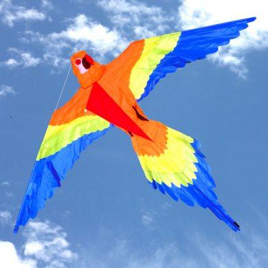 Orange Lorikeet kite