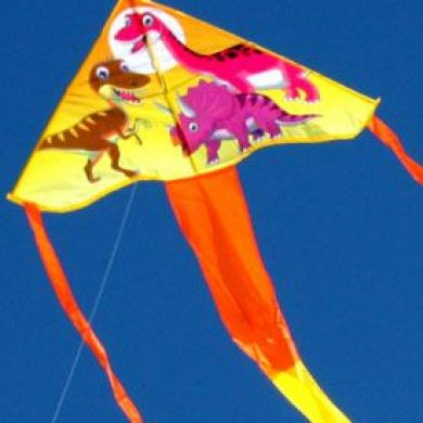 dinosaur long tailed delta kite for kids