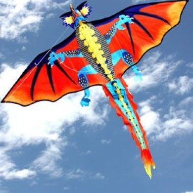 dragon single string kids kite