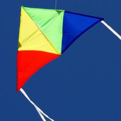 junior delta excellent australian made kites for kids