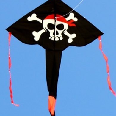 pirate kite long tailed delta kids kite