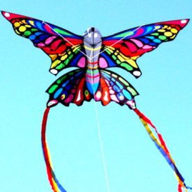 Rainbow printed Butterfly single string kite