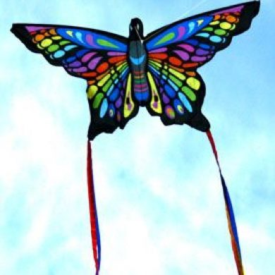 beautiful rainbow butterfly single string kite