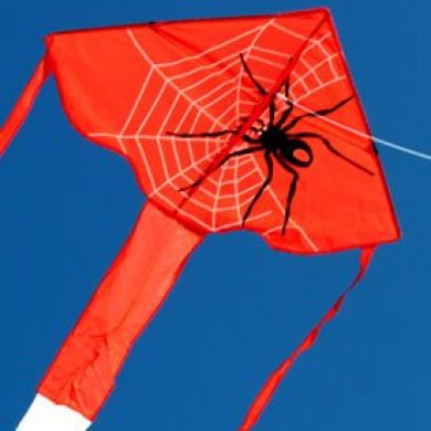 Spider delta childrens single string kite