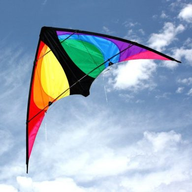 Stinger small stunt kite for 8 to 12 year olds