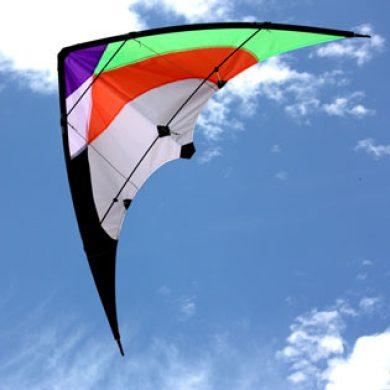 Twister Dual Control Kite