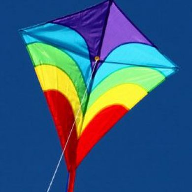 Waves sigle string kite for children in the sky